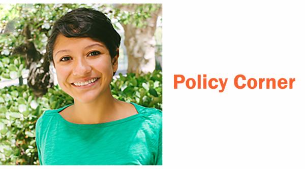 policy-corner.jpg