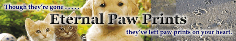 Eternal-Paw-Prints.png