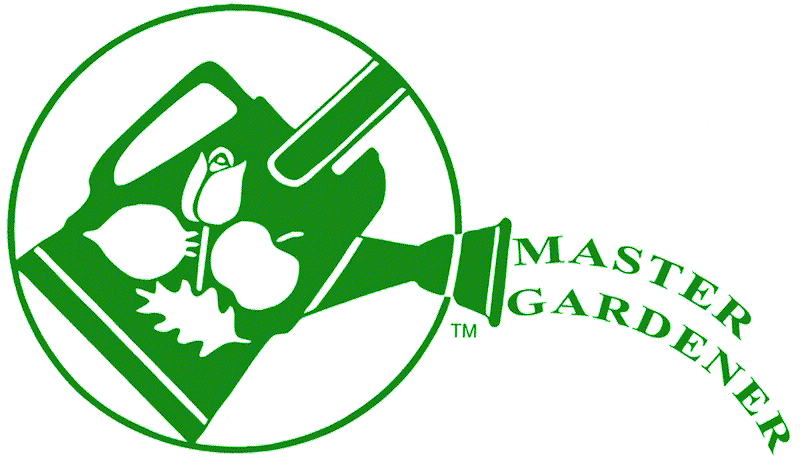 MG-Logo-Green-on-Transparent.png
