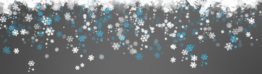 snowlake-banner.jpg