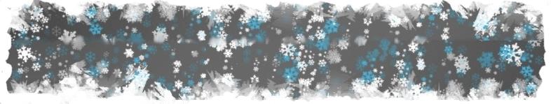 snowlake-banner-narrow.jpg
