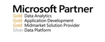 Microsoft Partners Logo - Gold and Silver