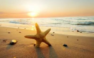 Beach-w-starfish.jpg