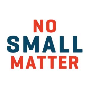 No Small Matter Logo
