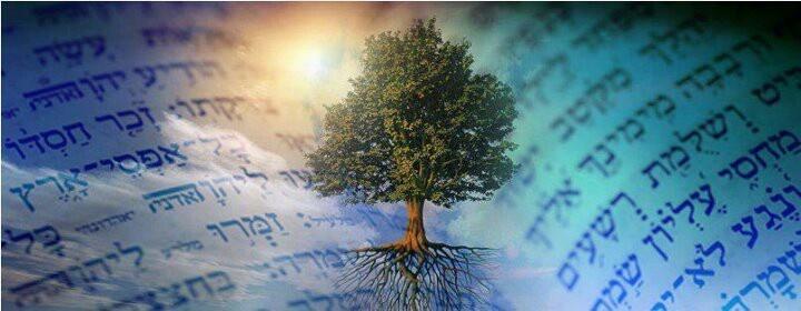 Awesome-tree.jpg