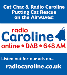 Radio Caroline playing cat chat adverts