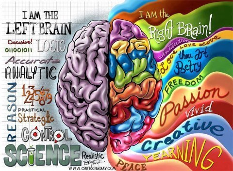 colorful-brain-right-and-left.jpg