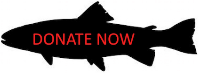 fish-donate-button-cropped.jpg