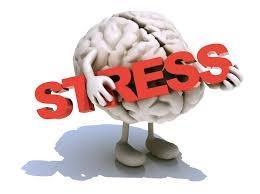 brain-holding-stress.jpg